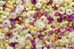 background of multi-colored flowers