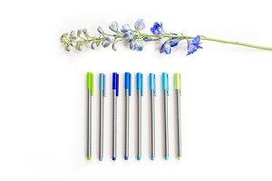 Blue & Green Branding Image