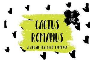 Cactus Romanus Brush Casual Typeface