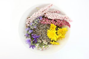 Bowl of wildflowers
