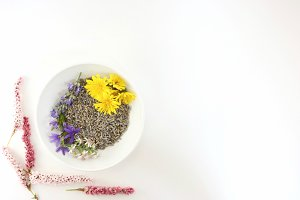Wildflowers with white background