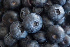 Blueberry Stock Photo #08