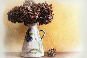 vase with dried hydrangeas
