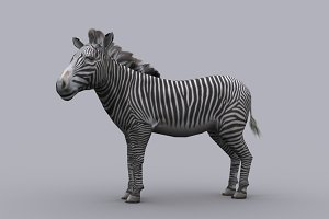 ZEBRA with Native File