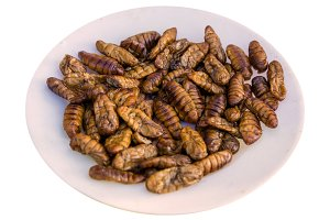 Fried silk worm is the food