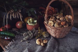 autumn nature gifts