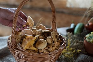 Different mushrooms in basket