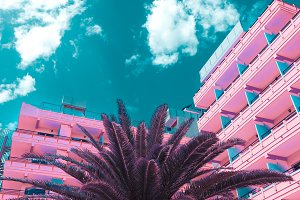 Pink minimal fashion. Palm