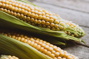 Raw corn on rustic wooden background