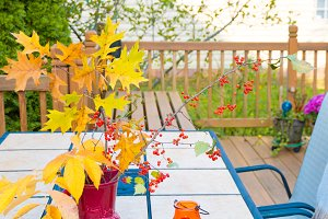 Fall season on family home patio