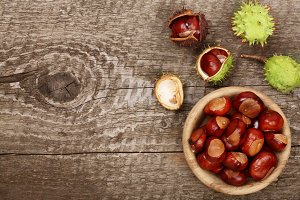 chestnut in bowl on old wooden background with copy space for your text. Top view