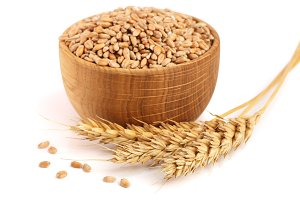 wheat spike and wheat grain in a wooden bowl isolated on white background