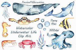 Watercolor Underwater Life Clipart