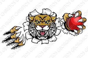 Wildcat Holding Cricket Ball Breaking Background