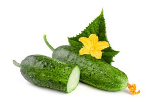 cucumber with leaf and flower isolated on a white background