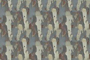 seamless texture bark background