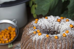autumn cake with powdered sugar