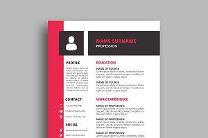 Resume/CV - v033