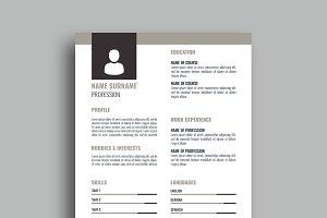 Resume/CV - v037