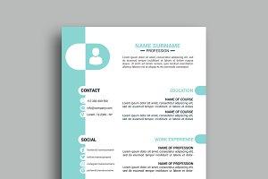 Resume/CV - v038