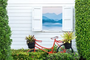 Decorate gardening with bicycle