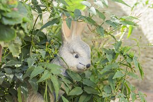 White rabbit statue