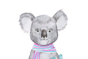 Portrait of cartoon smart koala wearing scarf and holding a book