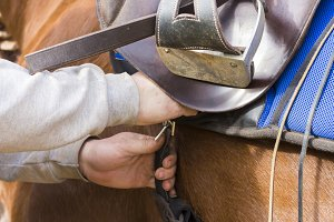 Man saddling a horse