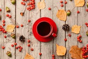 Autumn mood background