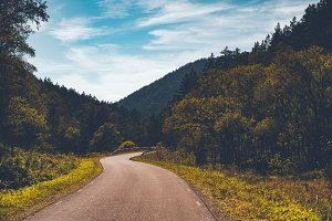 Road in mountains and forest