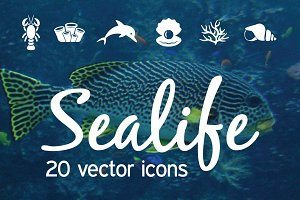 SEALIFE - vector icons