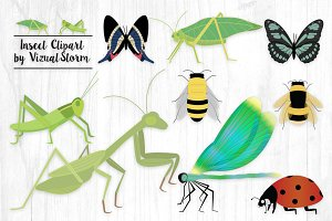 Insect Clipart - Bug Illustrations