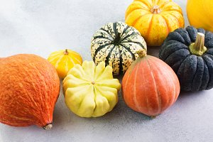 Different varieties pumpkins gourds