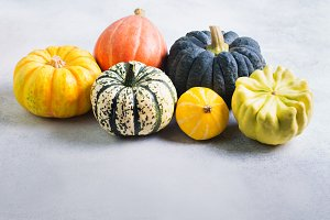 Different varieties of pumpkins and gourds