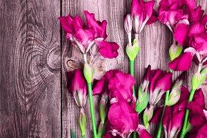 bouquet of purple irises