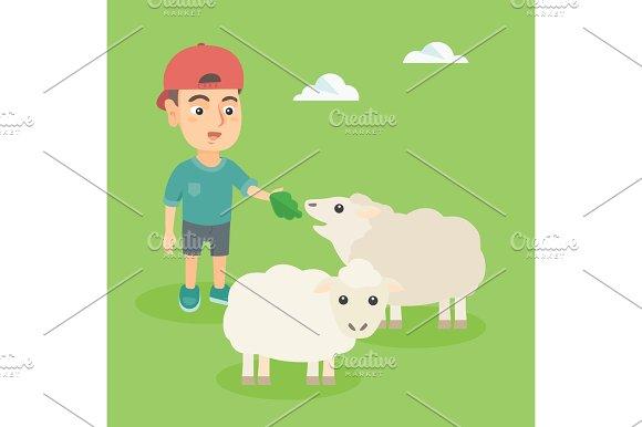 Little Caucasian Boy Feeding A Sheep With Salad