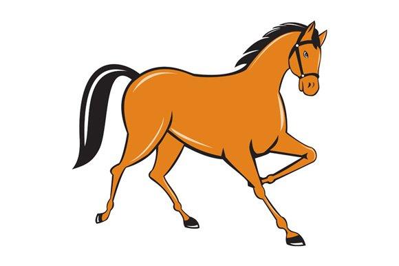 Horse cantering side cartoon illustrations creative market publicscrutiny Choice Image