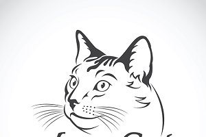 Vector of cute cat. Pet, Animal.