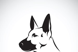 Vector of dog head.(German shepherd)