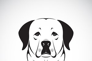 Vector of a dog head.(Labrador)