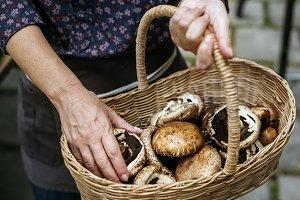 person pick up portobello mushroom