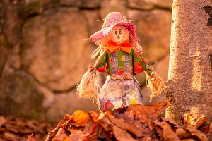 Scarecrow in the leaves