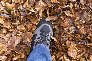 Fall, autumn, leaves, leg and shoe