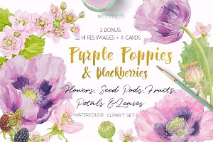 Purple Poppies&Blackberries-Clipart