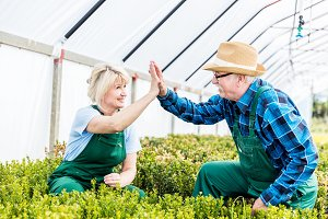 Gardeners team doing high five gesture at work in a greenhouse