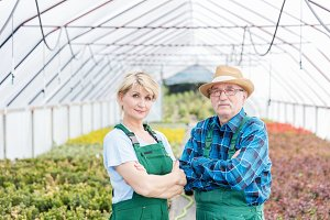 Professional gardeners standing in a greenhouse.