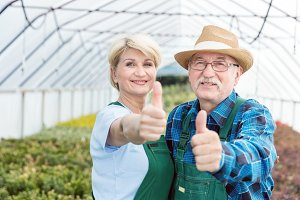 Professional gardeners showing OK sign in a greenhouse.