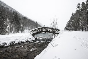 Bridge in the winter forest by river