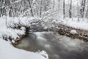River stream in the winter forest