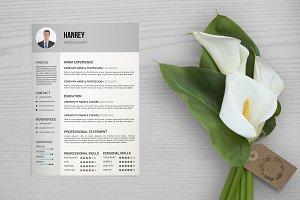 Resume / Cv Template-V040